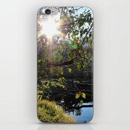 Blackwood Evenings iPhone Skin