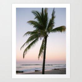 The pastel palm tree   Sunset photography in Santa Teresa Costa Rica  Art Print