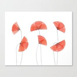 Flanders poppy, corn poppy, flower Canvas Print