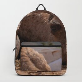 Smiley Baby Camel Backpack