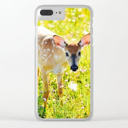 Great Meadows Fawn- Shenandoah National Park Clear iPhone Case