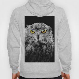 Owl photograph, black and white, with colored golden eyes Hoody