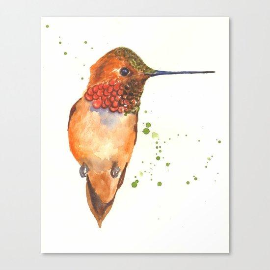 hummingbird, exotic birds, bird art Canvas Print