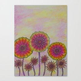 Zowie Zinnia Canvas Print