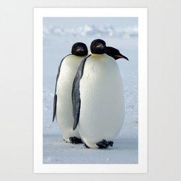 Emperor Penguins Huddled Art Print