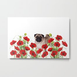Pug - Poppies Field Metal Print