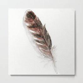 Feather Metal Print
