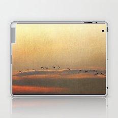 Sunset Flight Laptop & iPad Skin