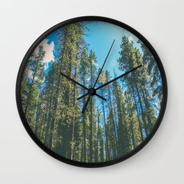 Follow the Forest Wall Clock