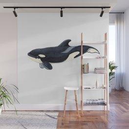 Baby orca Wall Mural
