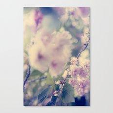 Innocent Pink Canvas Print