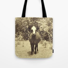 cow in field Tote Bag