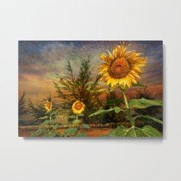Three Sunflowers Metal Print