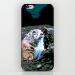 Watching for Incoming iPhone Skin