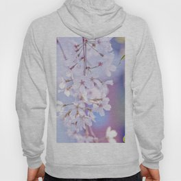 Weeping Cherry Blossom Hoody