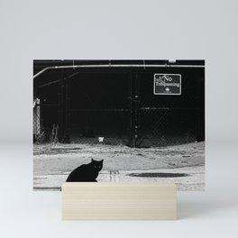 Cat Shadow Mini Art Print