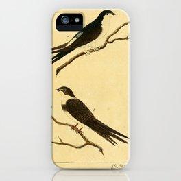Martin or Martlet or Sand or bank Martin6 iPhone Case