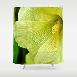 Soft Yellow Flower - The Peace Collection Shower Curtain