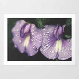 Nostalgic Purple Art Print