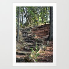 Going Up Art Print