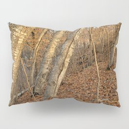 Prevailing Winds Pillow Sham