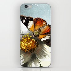 Butterfly on flower 12 iPhone & iPod Skin