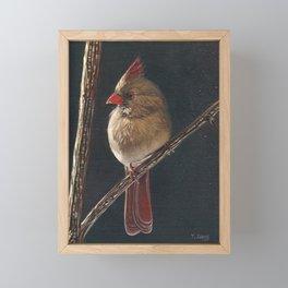 Oil painting female cardinal bird Framed Mini Art Print
