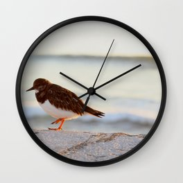 Sandpiper bird enjoying some relaxing time by the sea Wall Clock