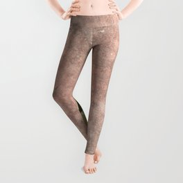 Cactus on Weathered pink wall Leggings