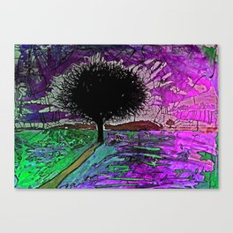 Psyfari #1  Canvas Print