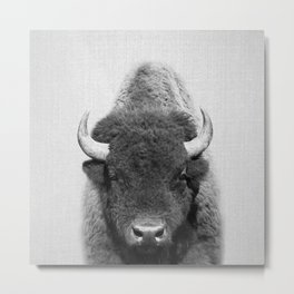 Buffalo - Black & White Metal Print