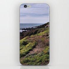 View iPhone & iPod Skin