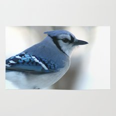 Blue Jay Rug