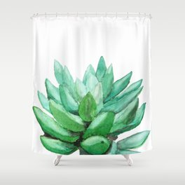 succulent echeveria Shower Curtain