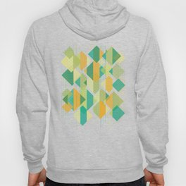 Grids, Lines, Squares Hoody