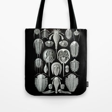 Trilobites and Fossils by Ernst Haeckel Tote Bag