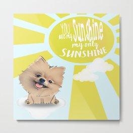 You are my Sunshine... Metal Print