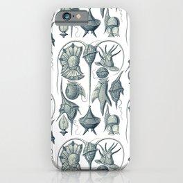 Ernst Haeckel Peridinea Plankton iPhone Case