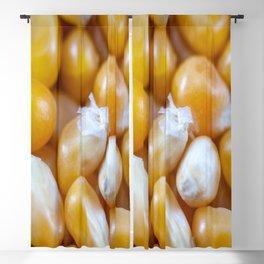 Popcorn Kernels Blackout Curtain