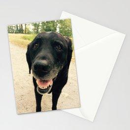 Smiling Black Lab Dog Stationery Cards
