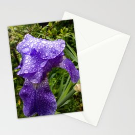 Iris after rain Stationery Cards