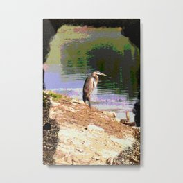 Great Blue Heron DPPA161101b Metal Print