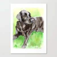 labrador Canvas Prints featuring Labrador by Martynas Juchnevicius