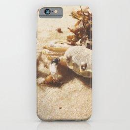 A Crustacean's Ghost iPhone Case