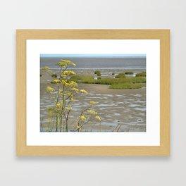 Mudflats and Fennel Framed Art Print