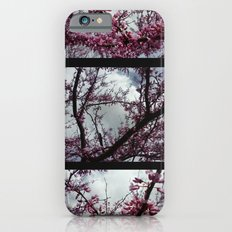 Under the trees: early spring Slim Case iPhone 6s