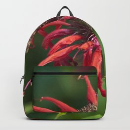 RED WILD FLOWER - Close Up Backpack
