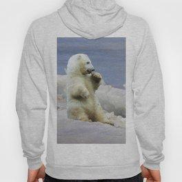 Cute Polar Bear Cub & Arctic Ice Hoody