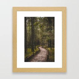 Pathway in the woods. || Latvian Forests. || Līgatne, Latvia. || MadaraTravels Framed Art Print