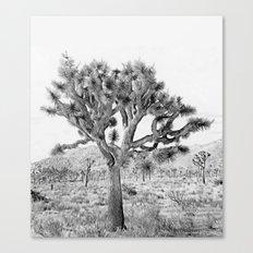 Joshua Tree Giant by CREYES Canvas Print